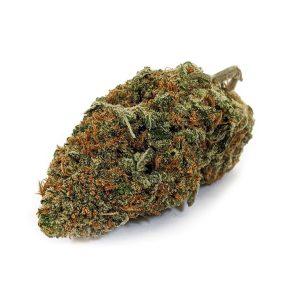 Black Nuken Cannabis-JET FUEL