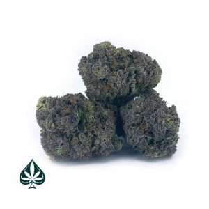 Buy Blue God Craft By Gas Demon- Indica (AAAA)