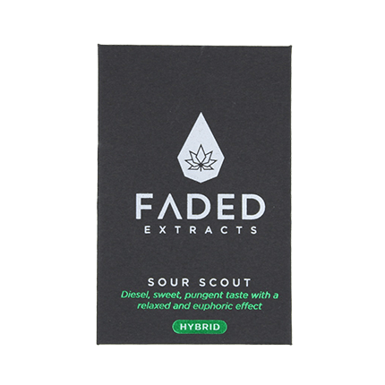 FADED EXTRACT SHATTERS Sour Scout