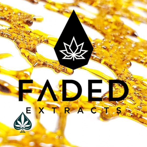 Buy Faded Extract Shatter