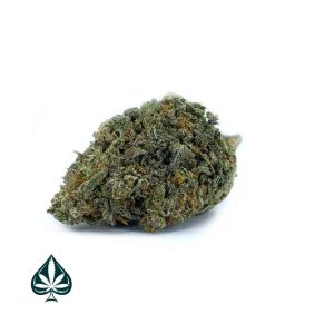 Buy Citrus Kush Bulk