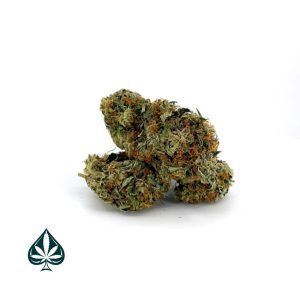 Granddaddy Purple Cannabis-Granddaddy Purple- Indica Dominant Hybrid (Aaa)