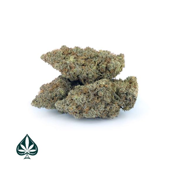 CRITICAL MASS CRAFT BY GAS DEMON - INDICA DOMINANT HYBRID (AAAA)