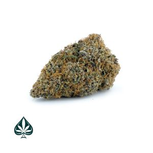 Buy GRAPE APE BY GAS DEMON - INDICA DOMINANT HYBRID (AAA)