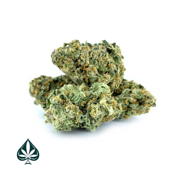 Buy LEMON SKUNK CRAFT BY GAS DEMON - SATIVA DOMINANT HYBRID (AAAA)