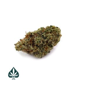 Buy MANDARIN COOKIES CRAFT BY GAS DEMON - SATIVA DOMINANT HYBRID (AAAA)