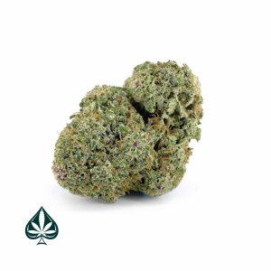 PINK GORILLA CRAFT BY GAS DEMON - INDICA DOMINANT HYBRID (AAAA)