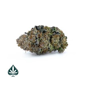 Buy PURPLE Space Cookies Craft By Gas Demon - Balanced Hybrid (AAAA)