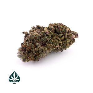 White Haze - Sativa Dominant Hybrid - AAA