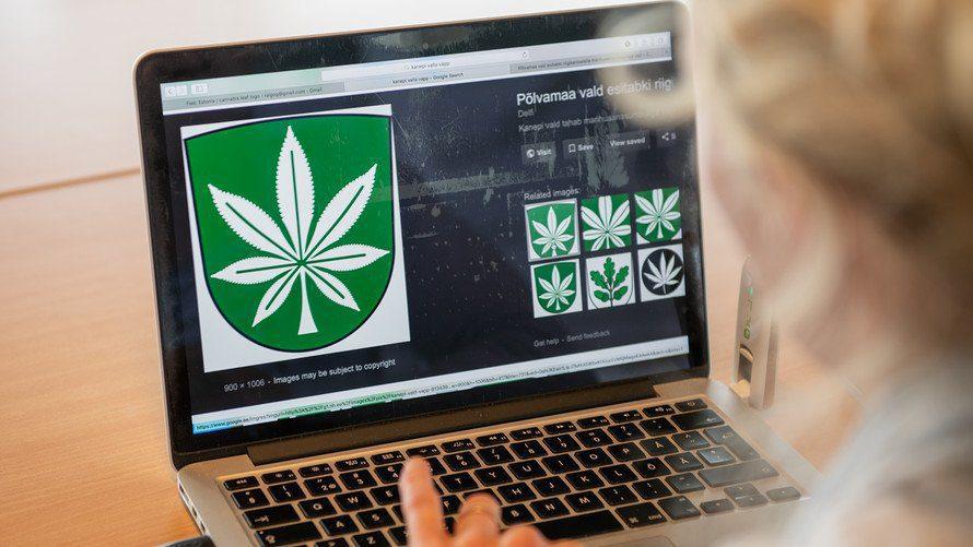 cannabis online dispensary