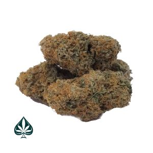 Buy Blueberry Romulan Craft by Gas Demon - Hybrid - AAAA