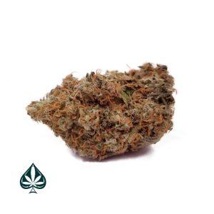 Buy Island Cannabis Strain Online