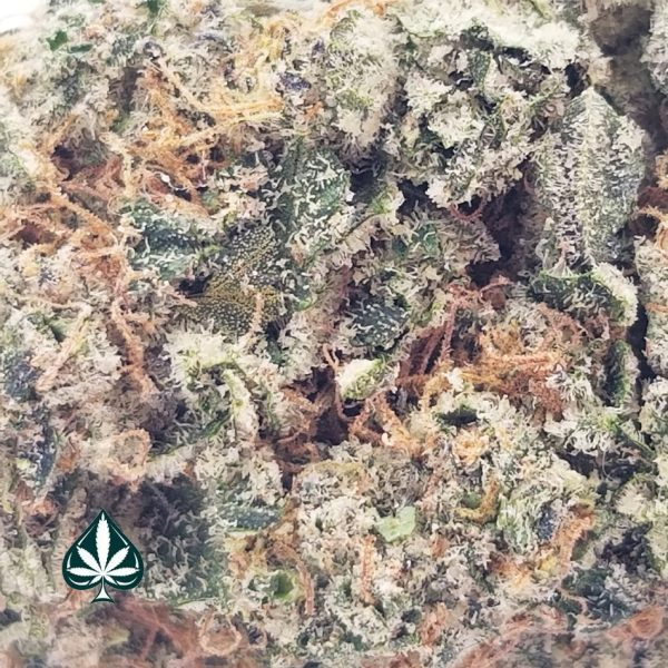 Girl's Scout Cookies Smalls- Indica Dominant Hybrid - AAAA