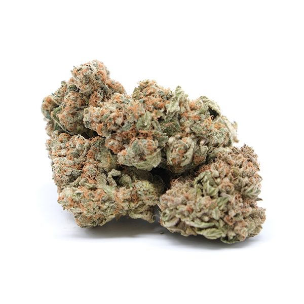 Buy 9lb Hammer by Queen Of Quads - Indica Dominant Hybrid (AAAA+)