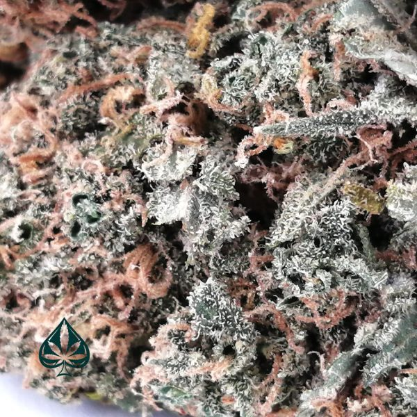 Buy Cookie Monster Weed Online