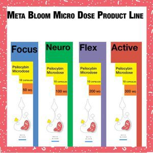 Shop Meta Bloom Products Online