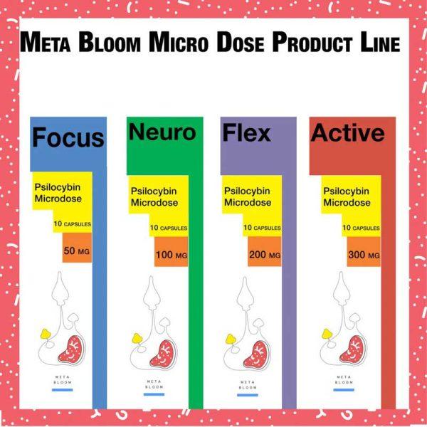 Shop Meta Bloom Products Online