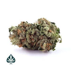 Buy BC Kush Weed Online