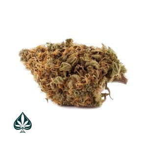 buy ak47 weed online cheap