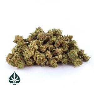 Buy Ghost OG Weed Online
