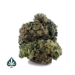 Buy Master Bubba Weed