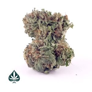 Buy Purple Kush Cannabis AAA Online