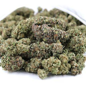 Buy Purple Kush Bulk Online