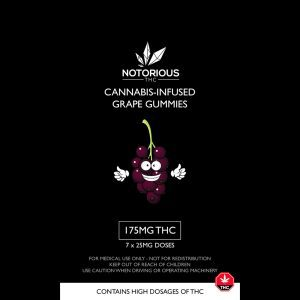 Buy Notorious Edibles - 175MG THC