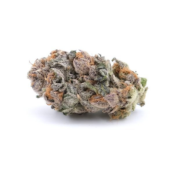 Buy Black Cherry - Hybrid (AAA+)