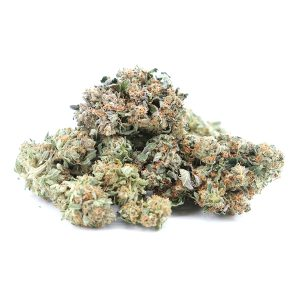 Buy El Jefe - Indica Dominate Hybrid (AAA)