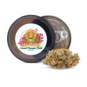 SOUR PATCH KIDS – SATIVA DOMINANT HYBRID – AAAA