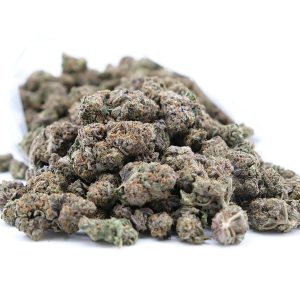 Buy Black Tuna - Hybrid (AAA)