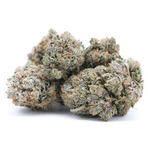 Buy Purple Candy - Hybrid (AAA)